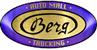 BERG AUTO MALL & TRUCKING INC Logo