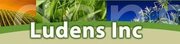 Ludens Inc Logo
