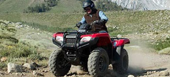 ATVs For Sale