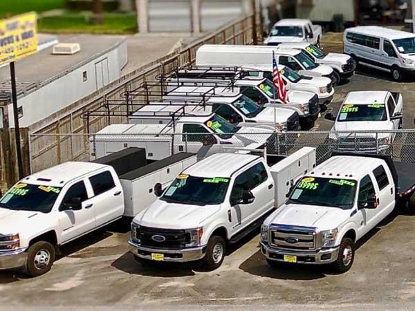 Fleet Trucks & Vans - Leopard Street