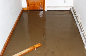 Let us share a little sumpin sumpin: How sump pumps work